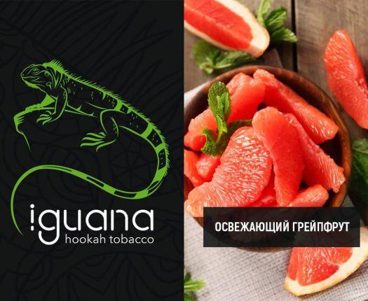 Табак для кальяна Iguana Освежающий грейпфрут