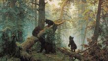 Утро в сосновом лесу ( Репродукция Шишкина)
