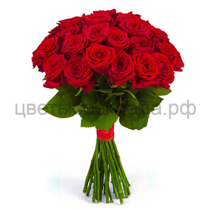25 роз Ред Наоми  России