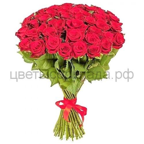 Ред Наоми красная роза России 51 штука