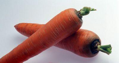 """Купить морковь """"Каротан"""" F1 (1 г) от Rijk Zwaan"""