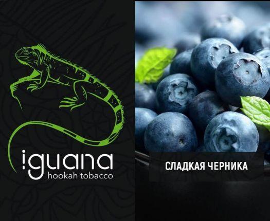 Табак для кальяна Iguana Сладкая черника
