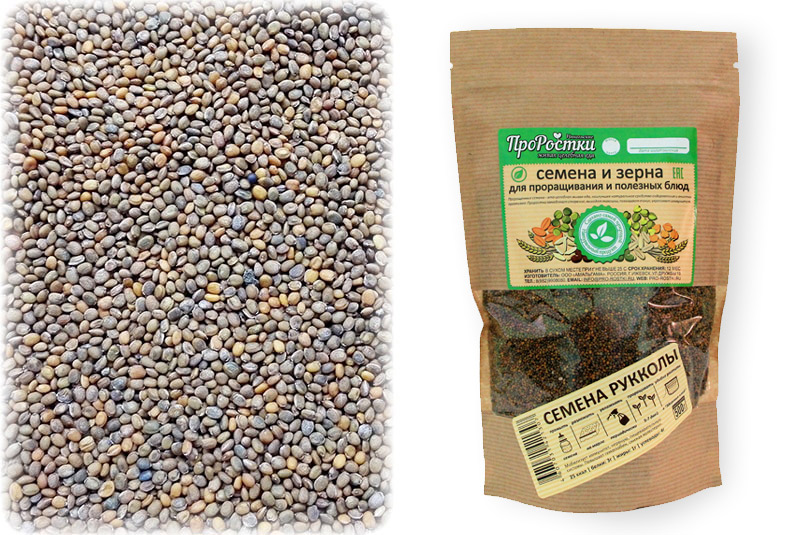 Семена Рукколы500