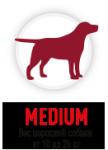 Medium (10-25 кг)