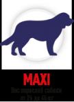 Maxi  (25-45 кг)