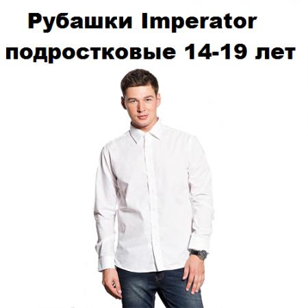 Рубашки ПОДРОСТКОВЫЕ (14-19 лет)