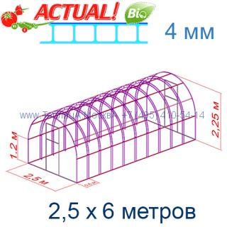 Теплица Богатырь Люкс 2,5 х 6 с поликарбонатом 4 мм Актуаль BIO