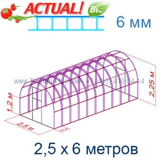 Теплица Богатырь Люкс 2,5 х 6 с поликарбонатом 6 мм Актуаль BIO