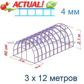 Теплица Богатырь Люкс 3 х 12 с поликарбонатом 4 мм Актуаль BIO