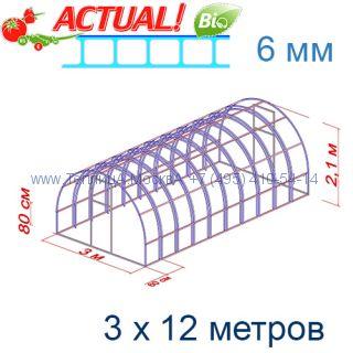Теплица Богатырь Люкс 3 х 12 с поликарбонатом 6 мм Актуаль BIO