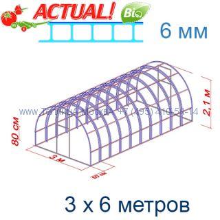 Теплица Богатырь Люкс 3 х 6 с поликарбонатом 6 мм Актуаль BIO