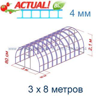 Теплица Богатырь Цинк 3 х 8 с поликарбонатом 6 мм Polygal