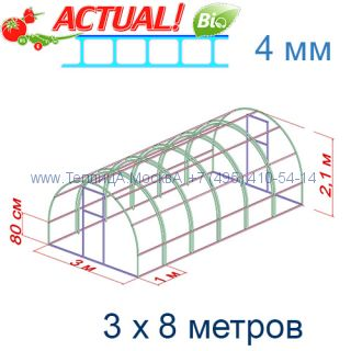 Теплица Кремлевская Премиум 3 х 8 с поликарбонатом 4 мм Актуаль BIO