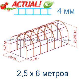 Теплица Кремлевская Цинк 2,5 х 6 с поликарбонатом 4 мм Актуаль BIO
