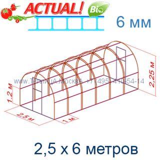 Теплица Кремлевская Цинк 2,5 х 6 с поликарбонатом 6 мм Актуаль BIO