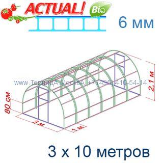 Теплица Кремлевская Цинк 3 х 10 с поликарбонатом 6 мм Актуаль BIO