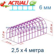 Теплица Богатырь Премиум 2,5 х 4 с поликарбонатом 6 мм Актуаль BIO