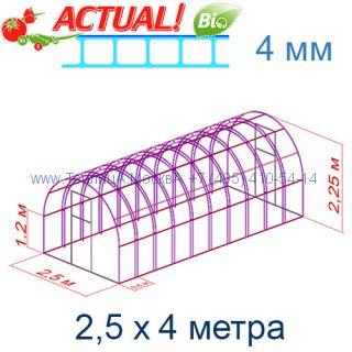 Теплица Богатырь Премиум 2,5 х 4 с поликарбонатом 4 мм Актуаль BIO