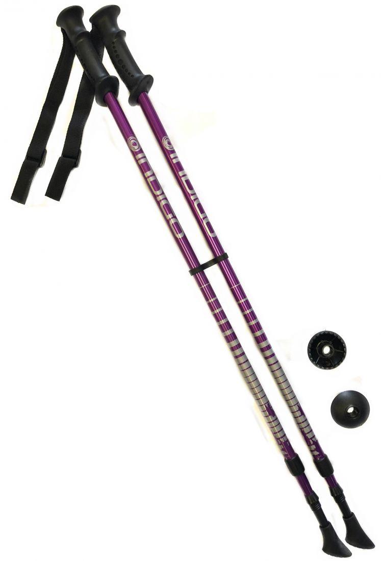 Палки для скандинавской ходьбы телескопические INDIGO SL-1-2