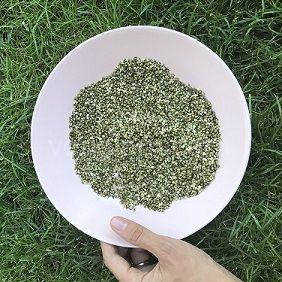Семена конопли лущённые,100 грамм