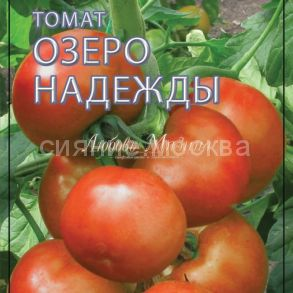 Томат Озеро Надежды F1. Серия Томаты-Фрукты