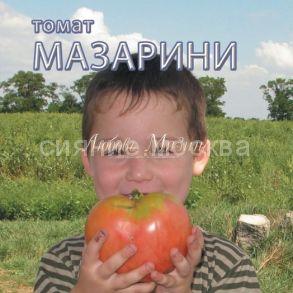 Томат Мазарини