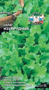 Салат листовой Изумрудный