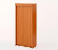 Шкаф-купе 2-х створчатый