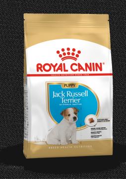 Роял канин Джек-Рассел-Терьер Паппи (Jack Russel Terrier Puppy)