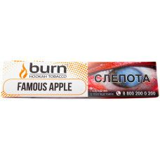 Burn Famous Apple