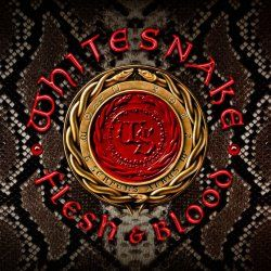 WHITESNAKE 'Flesh & Blood'