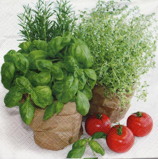 Салфетка бумажная 30*30 Травы в горшочках