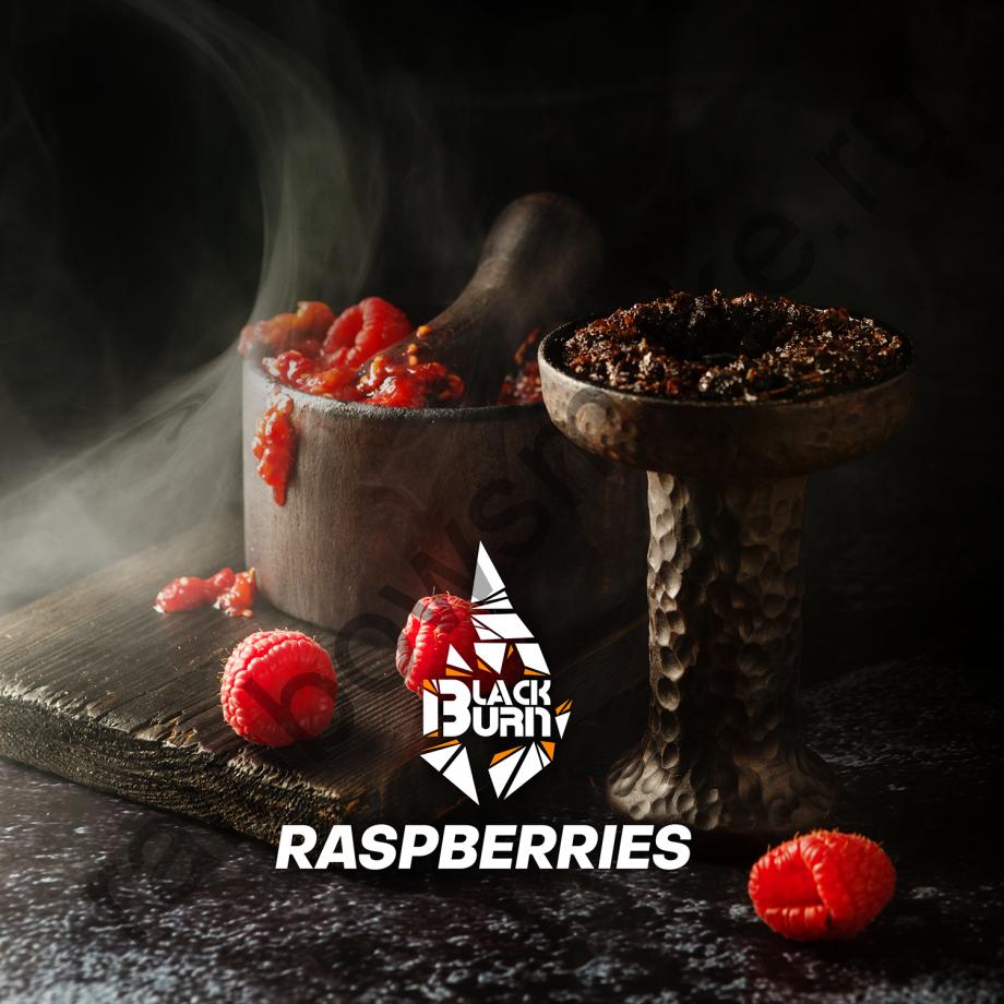 Black Burn 100 гр - Raspberries (Малина)