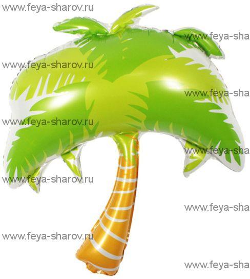 Шар Пальма 86 см