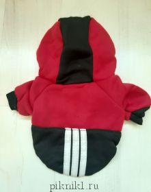 Спортивная толстовка с капюшоном красно-черная