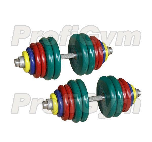 ГРЦ-75 Гантель разборная 75 кг цветная