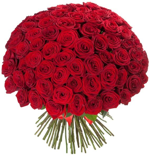 Букет из 101 красной розы «И пришла любовь»