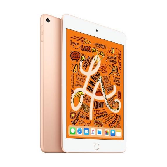 Apple iPad mini 256 ГБ Wi-Fi Золотой