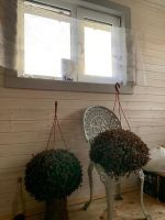 Масло-воск для внутренних работ Сигма-Декор Премиум белого цвета нанесён на вагонку из сосны в 1 слой