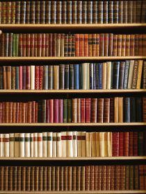 "Фон стена ""Bibliothek"" 2x1.5"