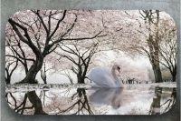 Наклейка на стол - Лебединое озеро | фотопечать Интерьерные наклейки