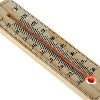 Универсальный бамбуковый термометр (2)