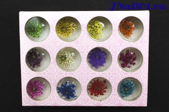 Сухоцветы для дизайна ногтей 12 цветов