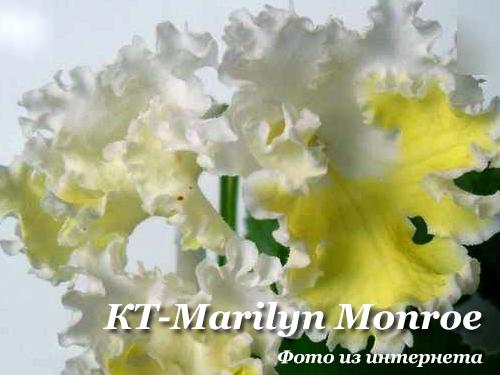КТ-Marilyn Monroe (И.Кабанова/Е.Трофименко)