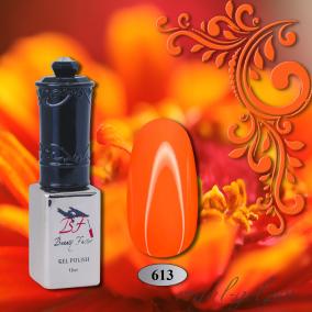 Гель лак Beauty-Factor от Royal 10 мл. 0613