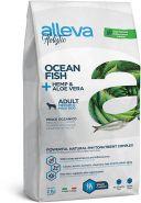 Alleva Holistic Ocean Fish + Hemp & Aloe vera Medium/Maxi Полнорационный сухой корм для взрослых собак средних и крупных пород с океаническая рыбой, 2кг