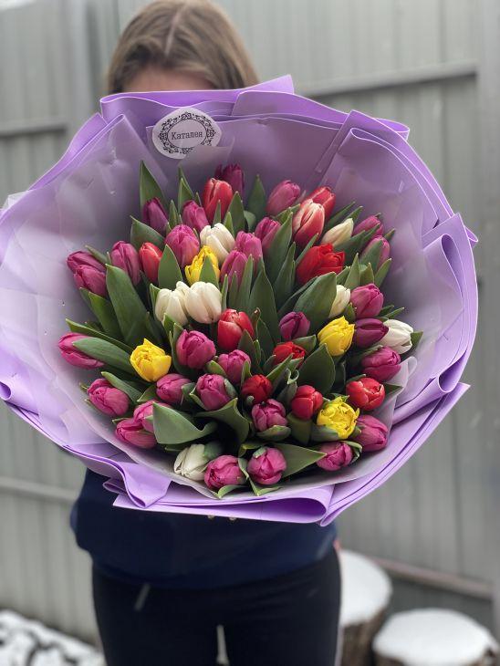 51 Тюльпан по Акции