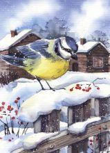 Почтовая открытка Зимняя гостья