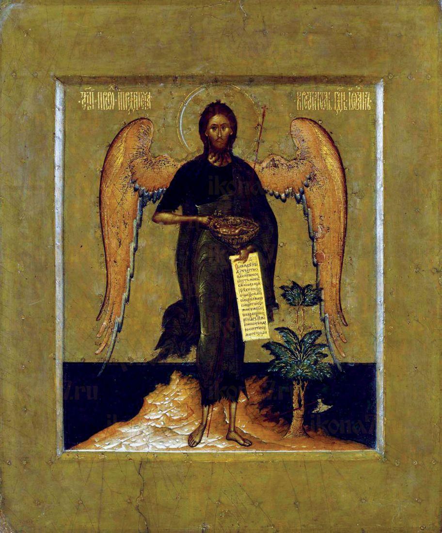 Икона Иоанн Предтеча Ангел пустыни