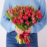 Тюльпаны 51 шт (любой цвет)